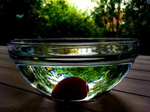 Eier schwimmen